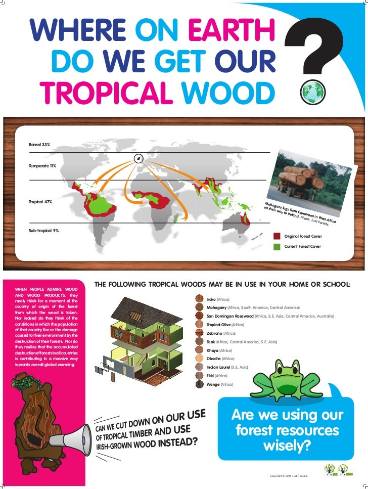 WHERE ON EARTH         DO WE GET OUR        TROPICAL WOOD        Boreal 33%        Temperate 11%        Tropical 47%      ...