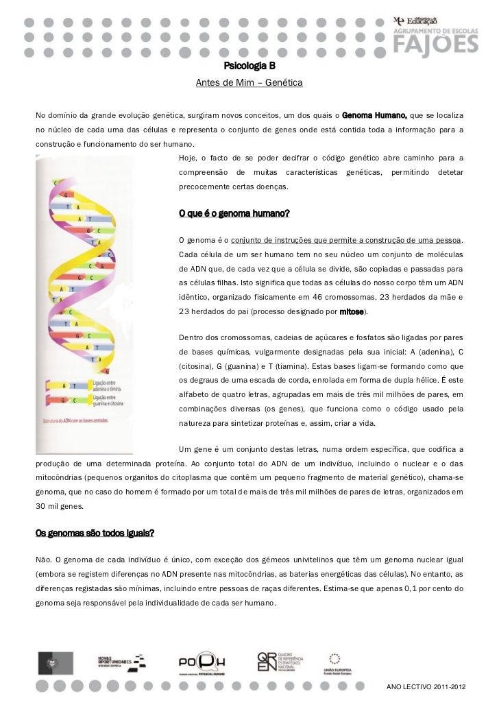 Psicologia B                                            Antes de Mim – GenéticaNo domínio da grande evolução genética, sur...