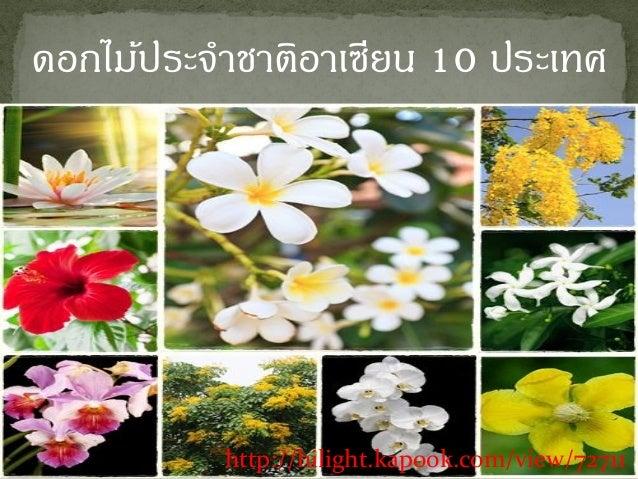 http://hilight.kapook.com/view/72711ดอกไม้ประจำชำติอำเซียน 10 ประเทศ