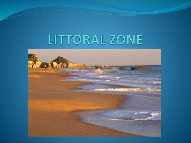 the littoral zone In this, the first collection of ecocritical essays devoted to australian contexts and their writers, australian and us scholars explore the transliteration of land.