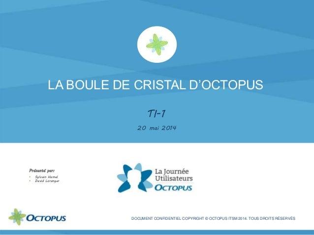 LA BOULE DE CRISTAL D'OCTOPUS TI-1 20 mai 2014 DOCUMENT CONFIDENTIEL COPYRIGHT © OCTOPUS ITSM 2014. TOUS DROITS RÉSERVÉS P...