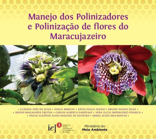 Manejo dos Polinizadores  e Polinização de flores do  Maracujazeiro  • cláudia inês da silva • paola marchi • kátia paula ...