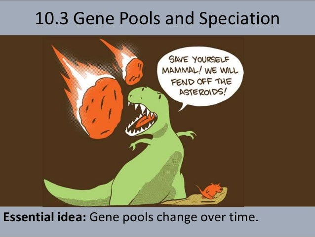 10.3 Gene Pools and Speciation Essential idea: Gene pools change over time.