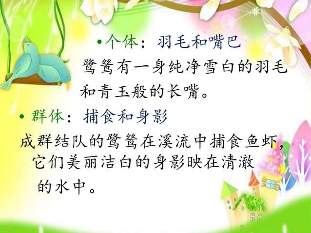 •近景:梨花 鹭鸶飞翔的姿态就像满树梨 花在晚风中飞荡。 • 远景:飞翔姿态 鹭鸶一旦受了惊吓,就会远走高 飞,在青山的映照下,他们飞翔的 姿态是多么的优雅。