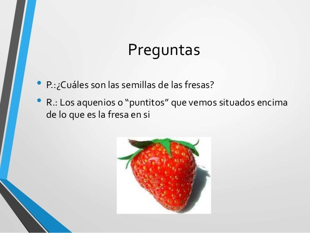 cuales son las semillas de las fresas