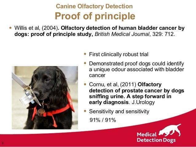 dog blatter cancer