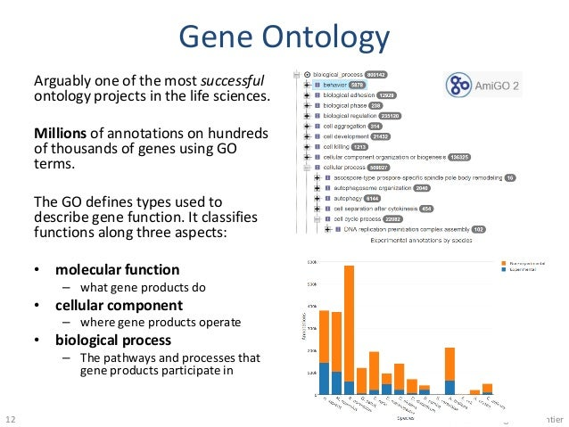 Gene Ontology Arguably one of the most successful ontology projects in the life sciences. Millions of annotations on hundr...