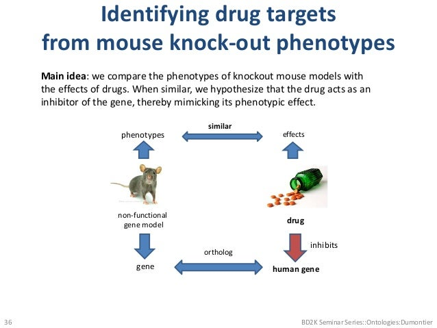 Identifying drug targets from mouse knock-out phenotypes BD2K Seminar Series::Ontologies:Dumontier36 drug gene phenotypes ...