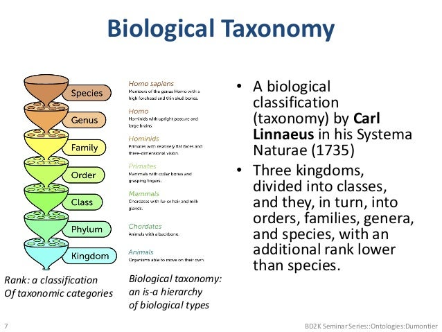 Biological Taxonomy • A biological classification (taxonomy) by Carl Linnaeus in his Systema Naturae (1735) • Three kingdo...