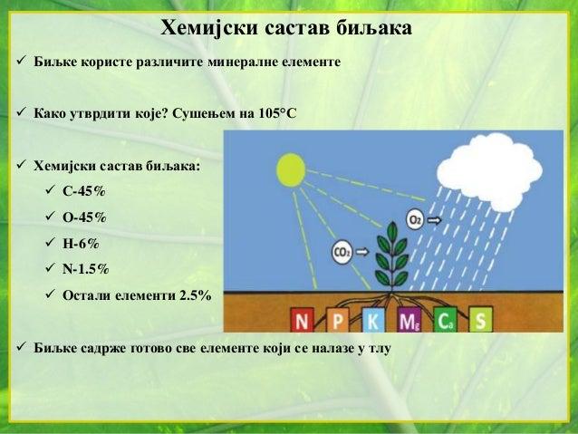 Хемијски састав биљака  Биљке користе различите минералне елементе  Како утврдити које? Сушењем на 105°С  Хемијски саст...