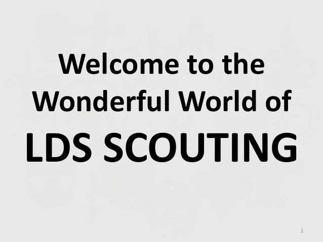 Welcome to the Wonderful World of LDS SCOUTING 1