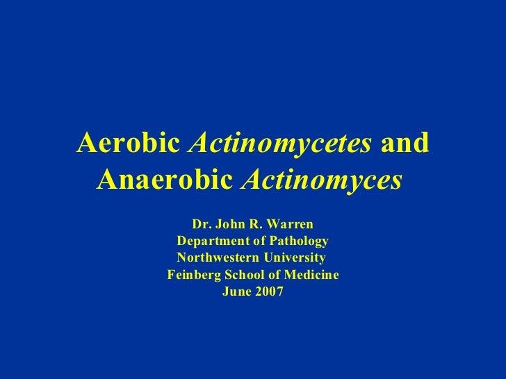 Aerobic  Actinomycetes  and Anaerobic  Actinomyces  Dr. John R. Warren Department of Pathology Northwestern University  Fe...