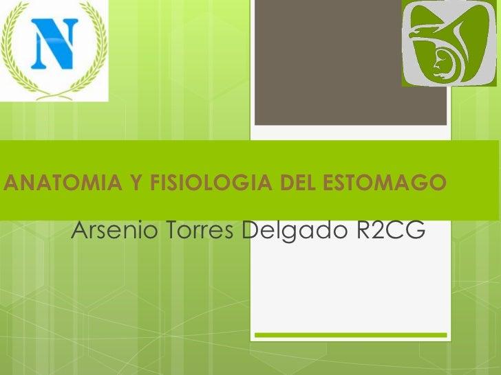 ANATOMIA Y FISIOLOGIA DEL ESTOMAGO     Arsenio Torres Delgado R2CG