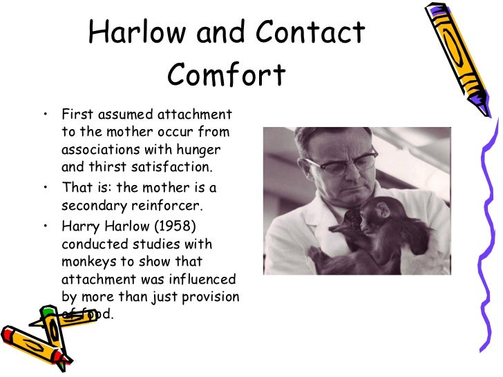 Harlow's Monkeys: Experiment, Comfort & Socialization ...