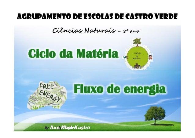AGRUPAMENTO DE ESCOLAS DE CASTRO VERDE Ciências Naturais – 8º ano by Ana Kastroby Ana Kastro