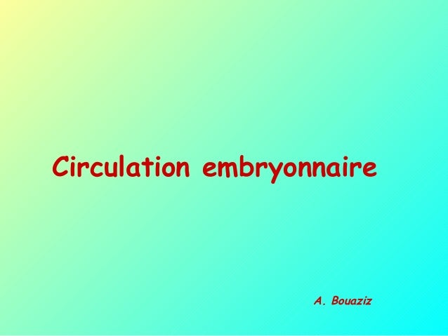 Circulation embryonnaire A. Bouaziz