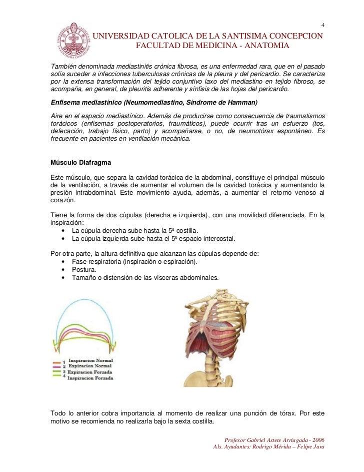 10. documento mediastino y diafragma
