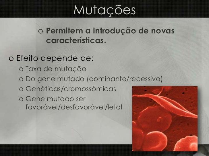 BioGeo11-factores evolução Slide 3
