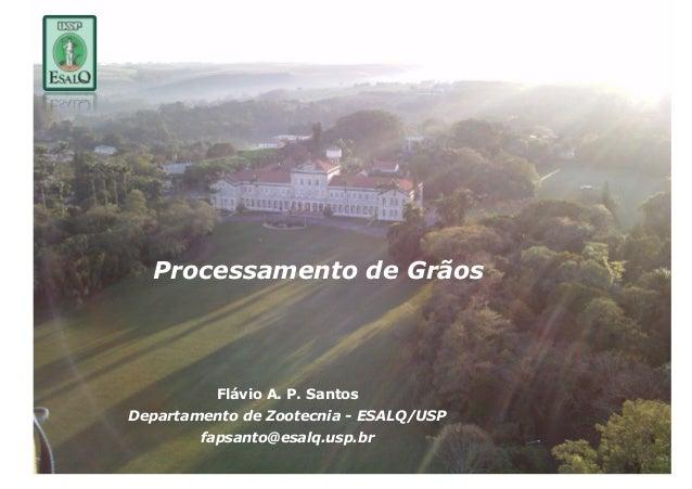 Processamento de Grãos          Flávio A. P. SantosDepartamento de Zootecnia - ESALQ/USP        fapsanto@esalq.usp.br