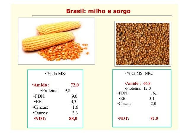 10 flavio-processamento de grãos - 24-04-12 Slide 2