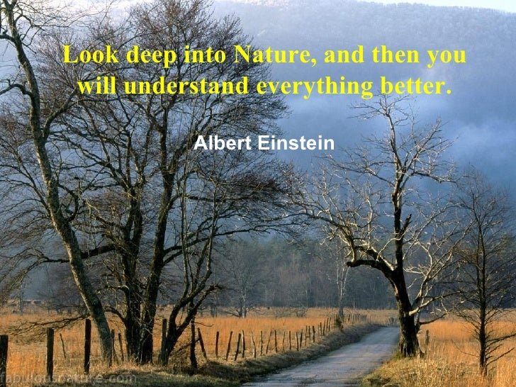 10 Great Quotes On Nature