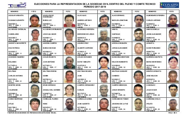 ELECCIONES PARA LA REPRESENTACION DE LA SOCIEDAD CIVIL DENTRO DEL PLENO Y COMITE TECNICO PERIODO 2017-2019 NOMBRES FOTO NO...