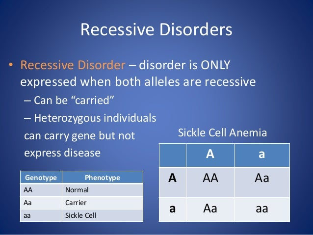 """Recessive Disorders • Recessive Disorder – disorder is ONLY expressed when both alleles are recessive – Can be """"carried"""" –..."""
