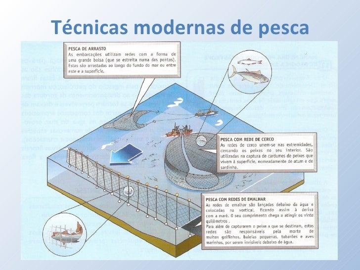 Pesca for Tecnicas culinarias modernas