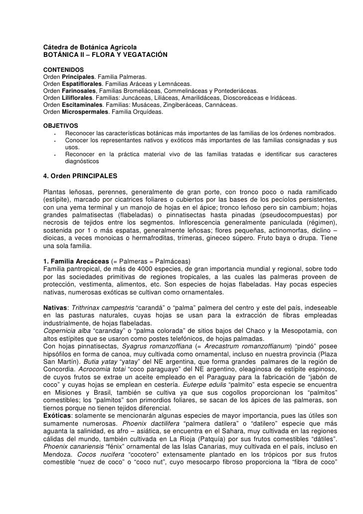 Cátedra de Botánica Agrícola BOTÁNICA II – FLORA Y VEGATACIÓN  CONTENIDOS Orden Principales. Familia Palmeras. Orden Espat...