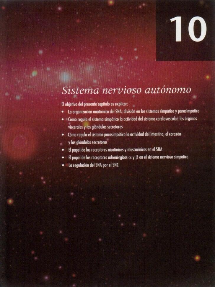 10   sistema nervioso autónomo