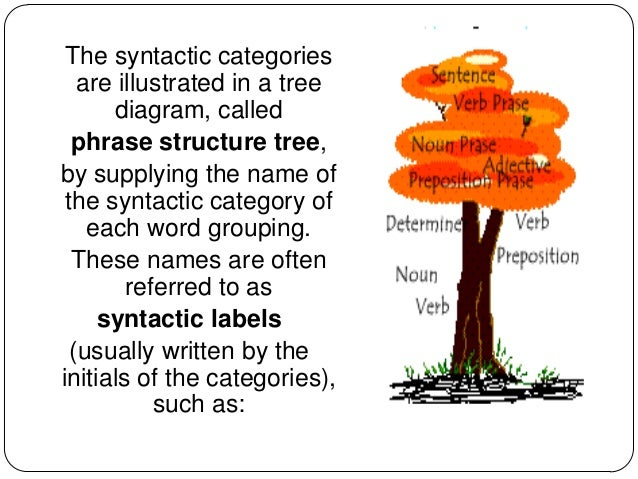 10 syntax syntax phrases 5 the syntactic categories are illustrated in a tree diagram ccuart Images