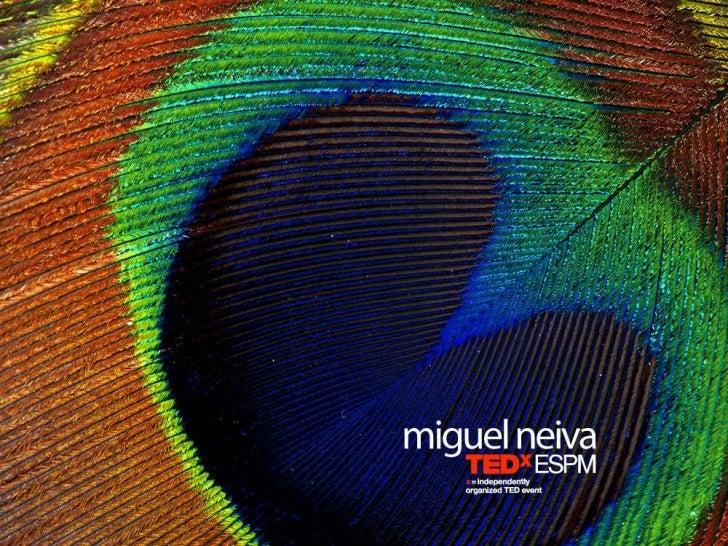 TEDxESPM - Miguel Neiva