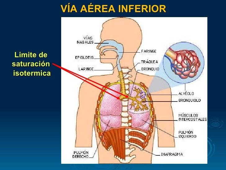 Cuidado enfermero en la vía aérea artificial - CICAT-SALUD