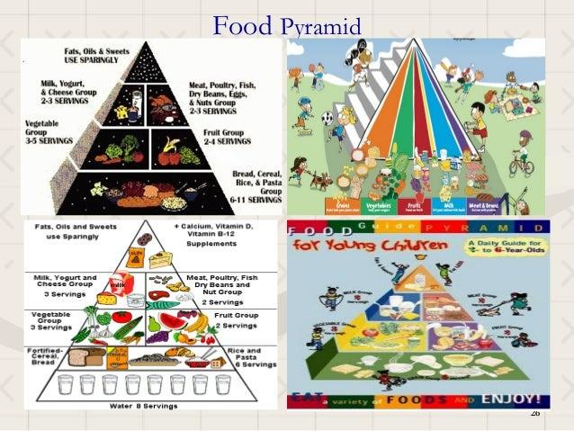 Food Pyramid               26               26