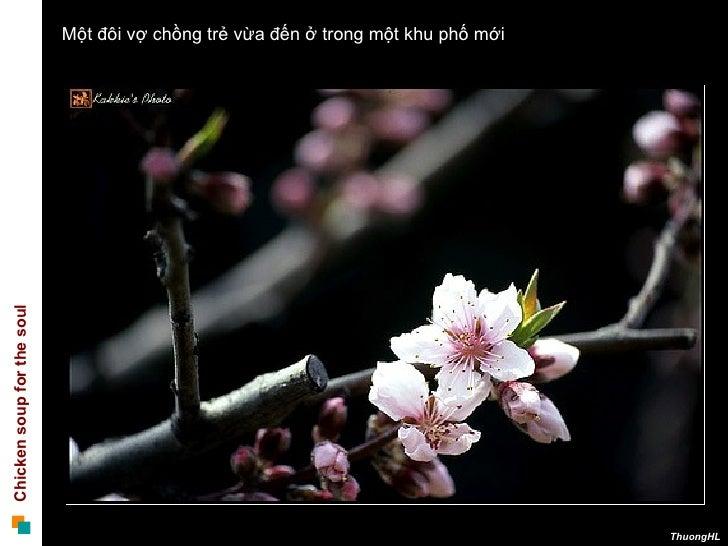 100119 Nhin Qua Khung Cua So Slide 2