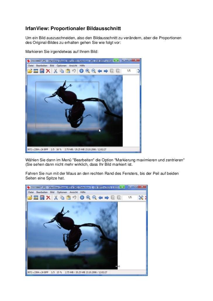 IrfanView: Proportionaler BildausschnittUm ein Bild auszuschneiden, also den Bildausschnitt zu verändern, aber die Proport...