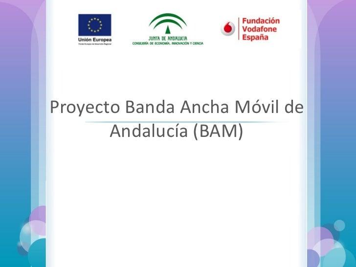 Proyecto Banda Ancha Móvil de Andalucía (BAM) Formación sobre  Ayudas Técnicas TIC