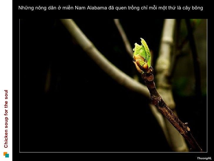 100220 Gia Tri Cua Nghich Canh Slide 2