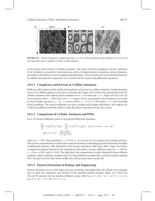 Cellular automaton modeling of biological pattern formation array cellular automata pdes and pattern formation rh slideshare net fandeluxe Gallery