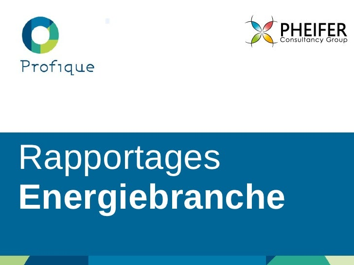 Rapportages  Energiebranche