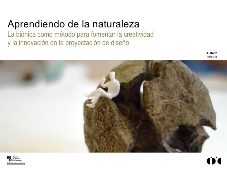 Aprendiendo de la naturaleza La biónica como método para fomentar la creatividad y la innovación en la proyectación de dis...