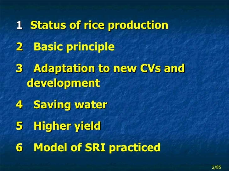 thesis on system of rice intensification This practice results in low yields, and low water productivity and water use efficiency the system of rice intensification (sri) on the other hand.