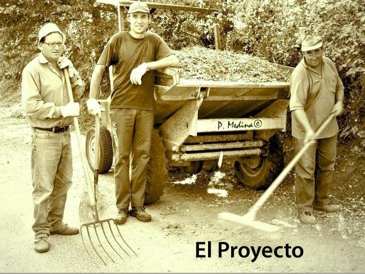 El Proyecto      5. Acciones