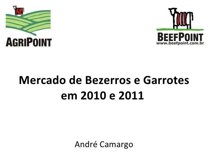 Mercado de Bezerros e Garrotes em 2010 e 2011   André Camargo