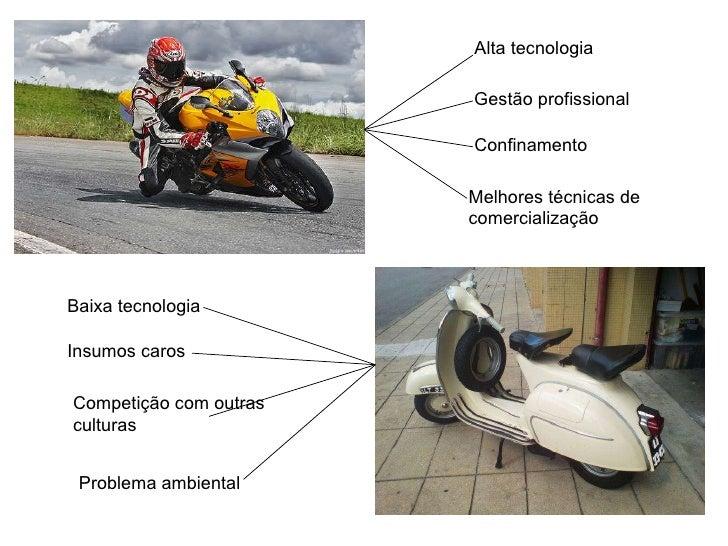 Alta tecnologia Gestão profissional Confinamento Melhores técnicas de comercialização Baixa tecnologia Competição com outr...