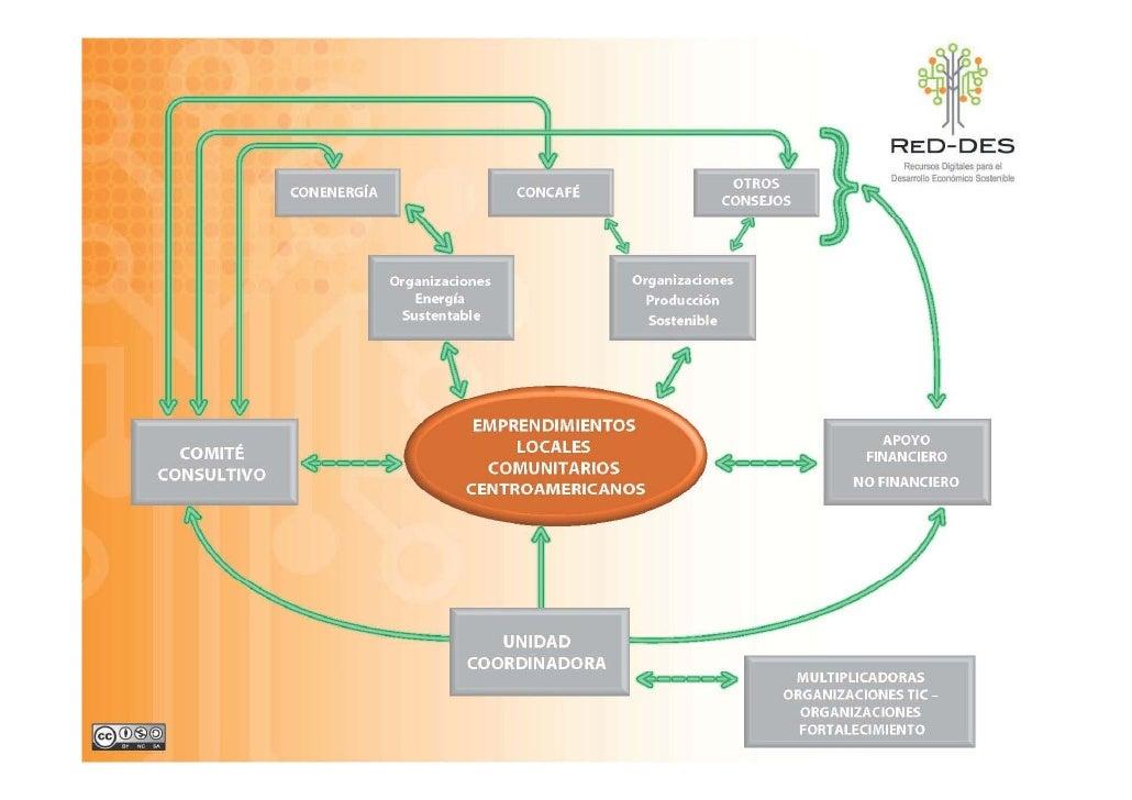 Valor de la Alianza  •   Complementariedad de expertises •   Trabajo en Red y con sus redes •   Desarrollo de capacidades ...