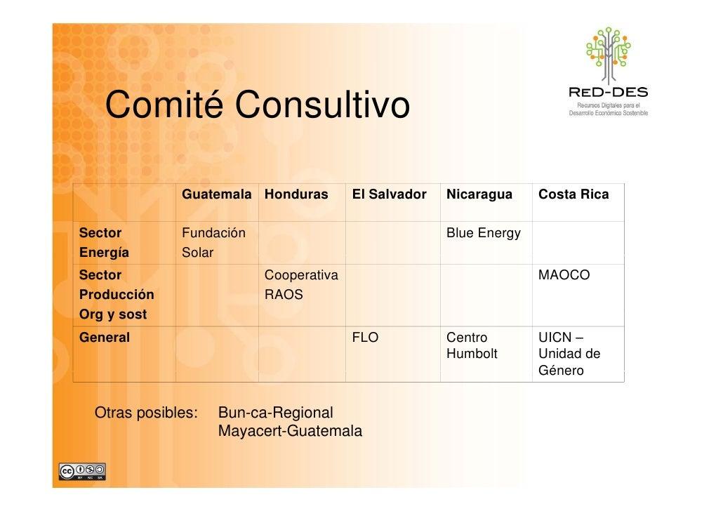 Comité Consultivo                Guatemala Honduras        El Salvador   Nicaragua     Costa Rica  Sector        Fundación...