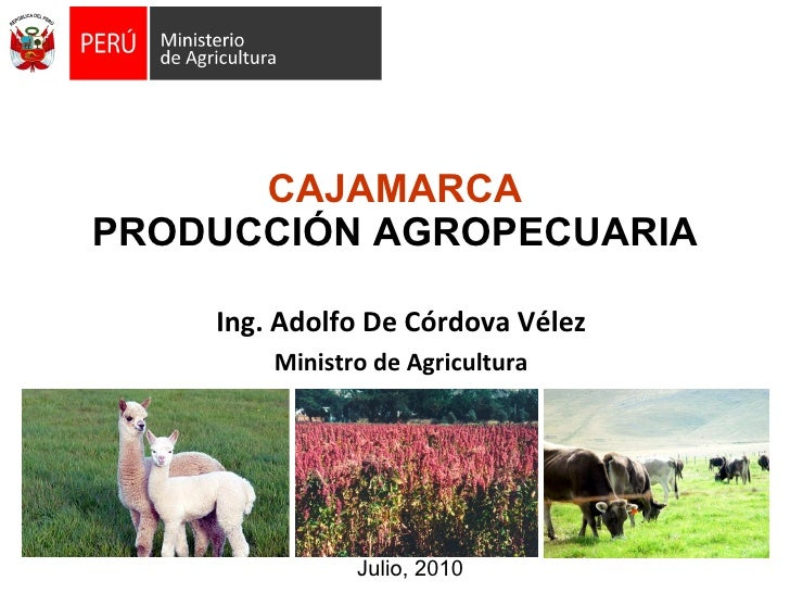 100708 agenda estado_adolfo_cordova