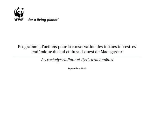 Programme d'actions pour la conservation des tortues terrestres endémique du sud et du sud-ouest de Madagascar Astrochelys...