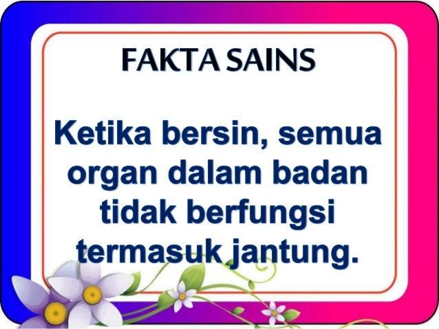 FAKTA SAI NS     Ketika bersin,  semua organ dalam badan  tidak berfungsi   ļermąsukjantung.   x Ä .  /X/   yw ŅÄ